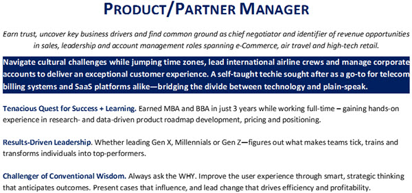 Resume Headline & Branding Paragraph - 2nd example