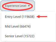 Indeed Experience Level Options